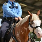 Deaf horse enlisted for police duties in Texas