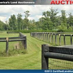 Cleveland-equine-estate-auction