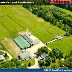 Geauga-County-Equine-Auction