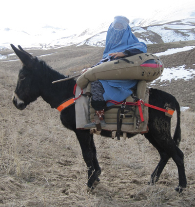 donkey-saddle.afghanistan