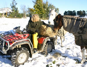 Your horses will be counting on you when disaster strikes. Are you prepared?