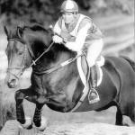 Famed eventing stallion Erin Go Bragh dies at 30