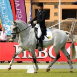 Australia's Shane Rose, seen here with overnight leader CP Qualified, is in first and third after Dressage at Adelaide (AUS), second leg of the FEI Classics™ 2013/2014 series.