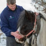 World Horse Welfare's chief field officer, David Boyd, with a fly-grazed horse. Photo: World Horse Welfare