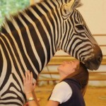 Lauren Burke with Holly the zebra at Spirit of Leadership.