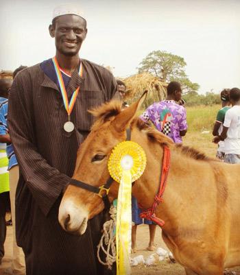 The winner of the mule class.