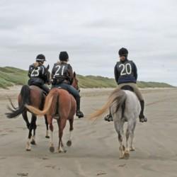 Dubai brings endurance riding into triathlon