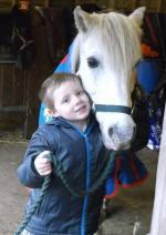 Amantes de los caballos en Gran Bretaña se han unido en la búsqueda de Tic Toc.