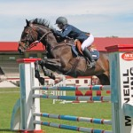 Equine business initiative launched in NZ