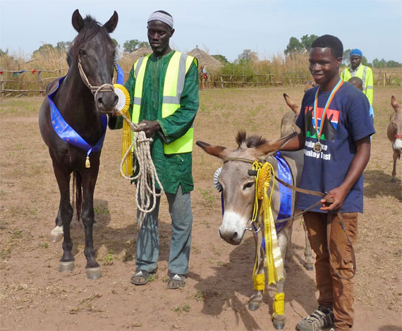 The stallion class winner, left, and Supreme Champion and Donkey Project winner Moses.