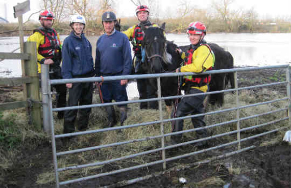 Successful rescue. The rescuers prepare to load the last mare and foal among nine horses saved from a flood pasture. Photo: British RSPCA