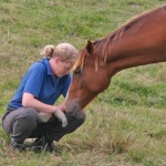 Why horses make the best kind of friends