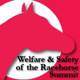welfare-racehorse-summit