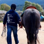 Veterans' equine therapy group named Blair Castle charity