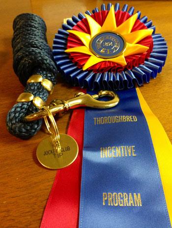TIP-prize-rosette2