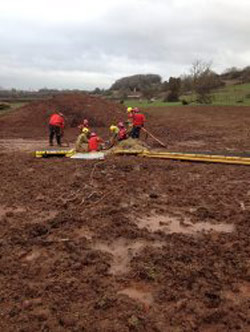 Firefighters works to free Geraldine. Photo: Avon Fire and Rescue Service