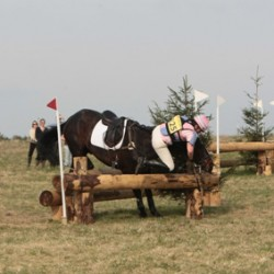 £25K award for safety innovation in eventing
