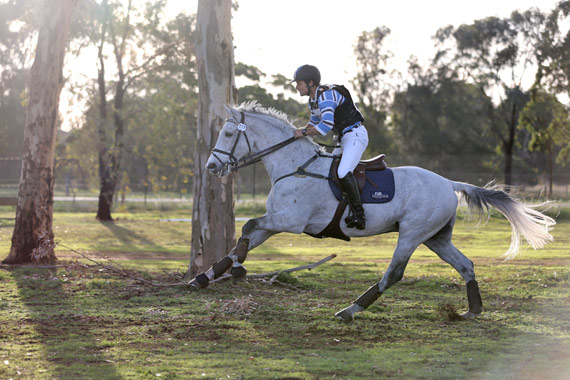 Shane Rose in the cross-country phase of the Melbourne International Horse Trails.