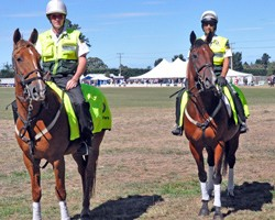 Riding to the rescue: mounted medics on the spot