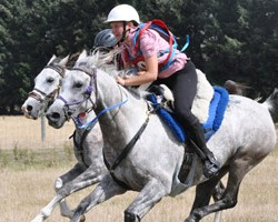 South Island Endurance Championships in pictures