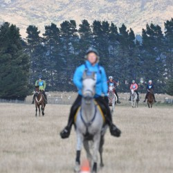 More pictures from the South Island Endurance Championships