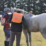 Debbie Worsfold and Northwinds Bradley McGregor at a vet check for the CEN Senior 62km Championship.