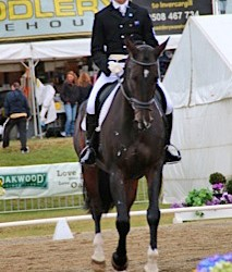 HoY eventing: Grayling takes early 3* lead