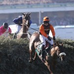 Should the Grand National be banned?