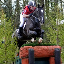 Irish hunter trials rider killed in rotational fall