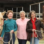 Sue Jacobson, left, Patricia Pendry and Phyllis Erdman with two PATH horses. Photo: Kate Wilhite, WSU