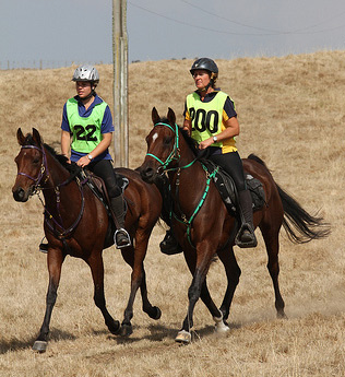 Mother and daughter pair, Georgia Smith left, and Andrea Smith, have been selected to New Zealand's endurance team to the 2014 World Equestrian Games in France. They are pictured on Glenmore Vixen and Glenmore Tariq, respectively.