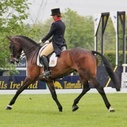 GB's Kitty King leads 3* at Ireland's Tattersalls Horse Trials