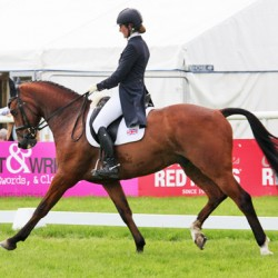 Brits hold top places at Tattersalls Horse Trials