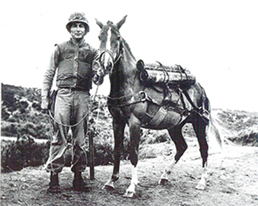 Reckless gave exemplary service during the Korean conflict.