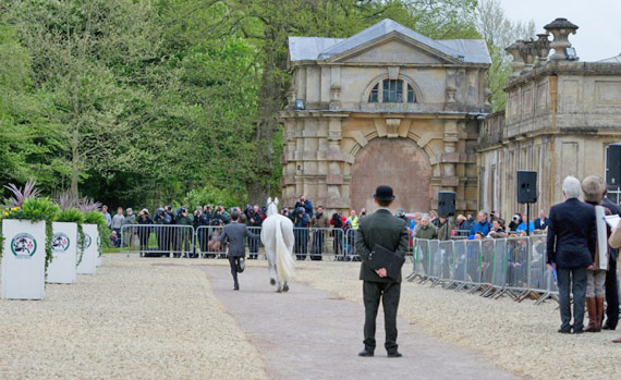 All horses passed the first inspection on Wednesday.