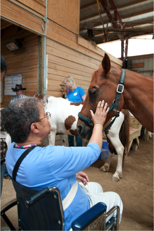 Those with Alzheimer's became calmer, happier after grooming horses, the researchers found.