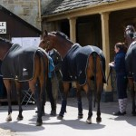 Horses from Mark Todd's stable arrive at Badminton.