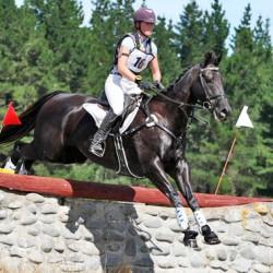 Citadelle wins NZ's first OTTB sport horse series title
