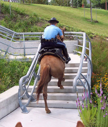 A shod horse would find it very difficult to climb these stairs.