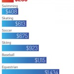 Hockey more expensive than horse sport, study finds