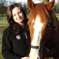 New online equine education venture launches
