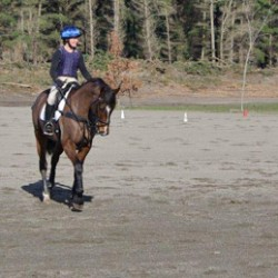 NZ pushes to lift profile of equestrian coaches