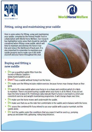 saddle-fit