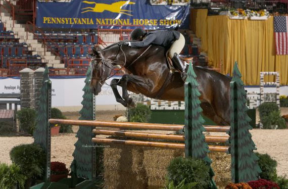 Tommi Clark and Exupery, Grand Hunter Champions at the 2012 Pennsylvania National Horse Show.