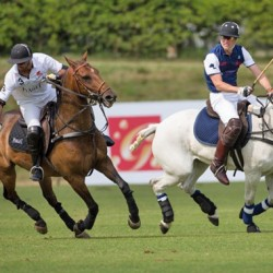 Polo princes: Harry beats William in charity match