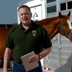 "Paul Morley: ""A few low-cost, common-sense preventative measures will help keep horses healthy while traveling."""