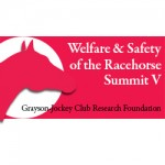 Racehorse welfare summit to be streamed live