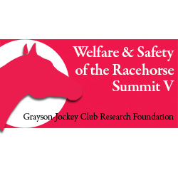 racehorse-summit