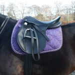 Image showing the seat of a saddle tipping back. The panels of the saddle have contact with the horse's back at the front and the back but not under the middle of the saddle. This is called bridging and causes focal pressure under the front and back of the saddle.