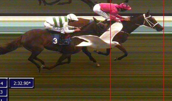 The photo finish of Brighton's Daily Racing Markets At starspreads.com Fillies' Handicap.